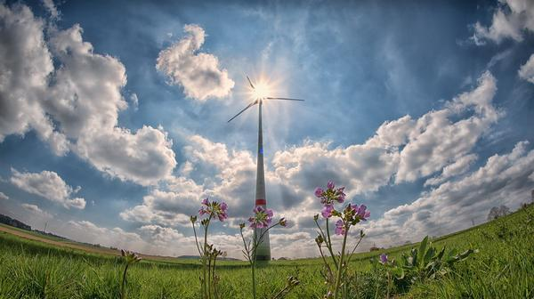Risultati immagini per Politica energetica. Riduzione delle fonti inquinanti